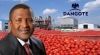 Production Resumes At Dangote's Tomato Plant In Kano