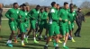 AFCON 2019: Ignore Algeria, Kick Tunisia For Us – Coaches To Super Eagle